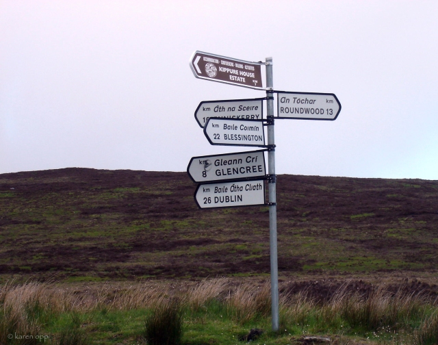 sally-gap-crossroads